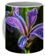 Harlequin Blue Flag Coffee Mug