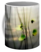 Harmony Zen Photography II Coffee Mug by Susanne Van Hulst
