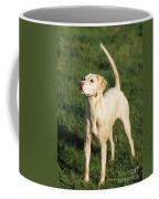 Harrier Dog Coffee Mug