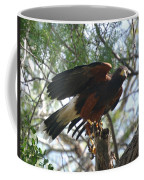 Harris Hawk Coffee Mug
