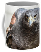 Harris Hawk Ready For Attack Coffee Mug