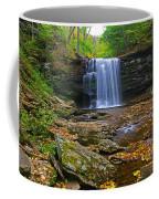 Harrison Wright Falls In Early Fall Coffee Mug