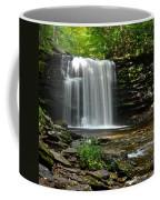 Harrison Wright Falls Coffee Mug