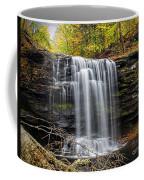 Harrison Wright - Ricketts Glen Coffee Mug