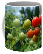 Harvest Tomatoes Coffee Mug