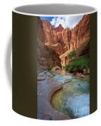 Havasu Creek Coffee Mug by Inge Johnsson
