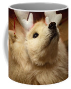 Have I Been A Good Doggie? Coffee Mug