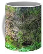 Hawaii Fern Grotto Coffee Mug