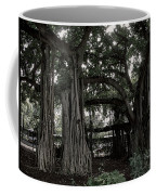 Hawaiian Banyan Trees Coffee Mug