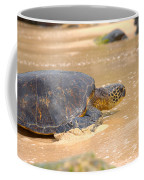 Hawaiian Green Sea Turtle 2 Coffee Mug