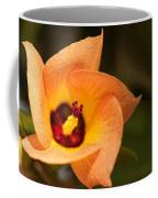 Hawaiian Hau Coffee Mug