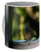 Hawaiian Mourning Dove Coffee Mug