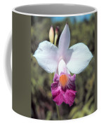 Hawaiian Orchid Coffee Mug