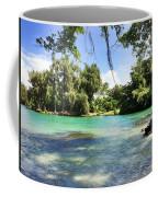 Hawaiian Landscape 4 Coffee Mug