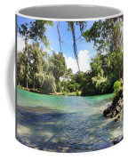 Hawaiian Landscape Coffee Mug