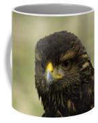 Hawk 1 Coffee Mug