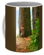 Hawk Eyes Coffee Mug