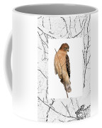 Hawk Framed In Branch Outline Coffee Mug