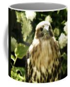Hawk Portrait Coffee Mug