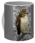 Hawk V3c Coffee Mug