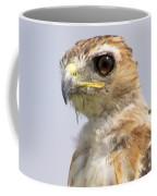 Hawkeye Coffee Mug