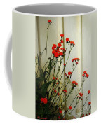 Hawkweed In Late Autumn Sun Coffee Mug
