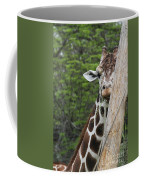 Hay Not Just For Horses Coffee Mug