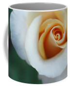 Hazy Rose Coffee Mug