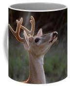 Head High Coffee Mug