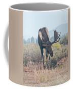 Head Lowered Bull Moose Coffee Mug