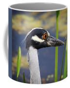 head shot - Yellow crowned Night Heron Coffee Mug