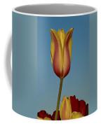 Heads Above The Rest Coffee Mug