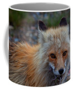 Heads Or Tails Coffee Mug