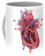 Heart Blood Flow Coffee Mug