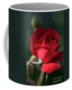 Heart Gently Coffee Mug