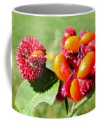Hearts-a-bursting Seed Pods Coffee Mug by Duane McCullough