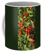 Heavenly Bamboo Red Berries Coffee Mug