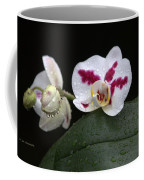 Heavenly Tranquility Coffee Mug