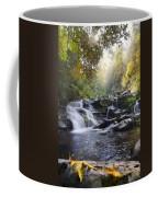 Heaven's Light Coffee Mug by Debra and Dave Vanderlaan