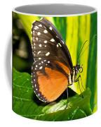 Hecale Longwing Butterfly Coffee Mug