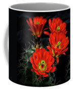 Hedgehog Cactus  Coffee Mug