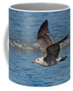 Heermanns Gull Coffee Mug