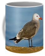 Heermanns Gull On Rock Coffee Mug