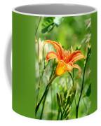 Heightened Awareness  Coffee Mug