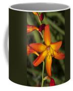 Helical Desecration Coffee Mug