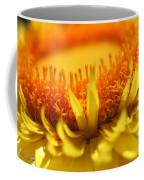 Helichrysum Bracteatum Named Strawburst Yellow Coffee Mug