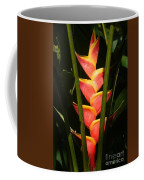 heliconia from Costa Rica 8 Coffee Mug