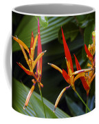 Heliconia Psitacorum Coffee Mug