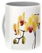 Hello Look At Me Coffee Mug