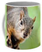 Hello Squirrel Coffee Mug